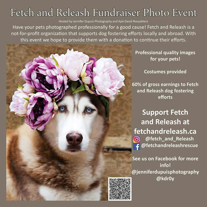 Pet Photo Fundraiser! Bring your dogs and get professional photos to help dogs in need